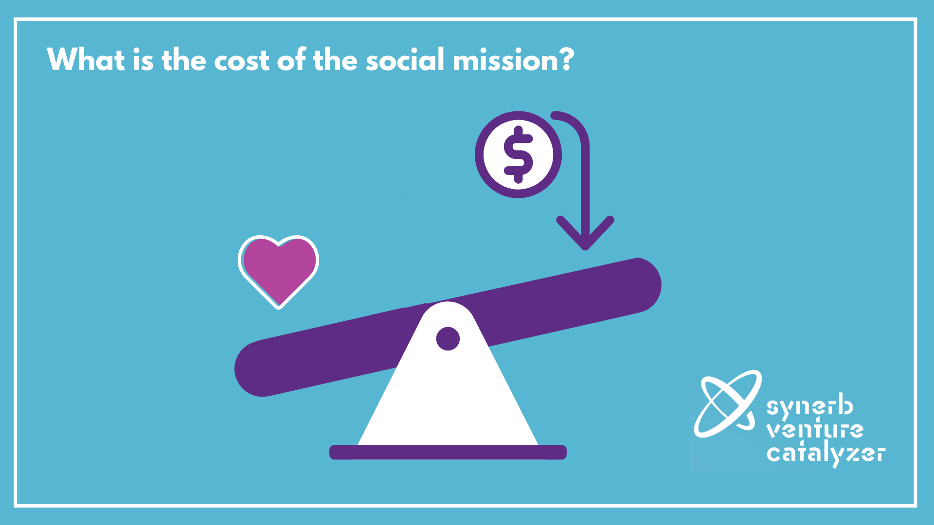 The Cost of the Social Mission Synerb Sonia Oprean