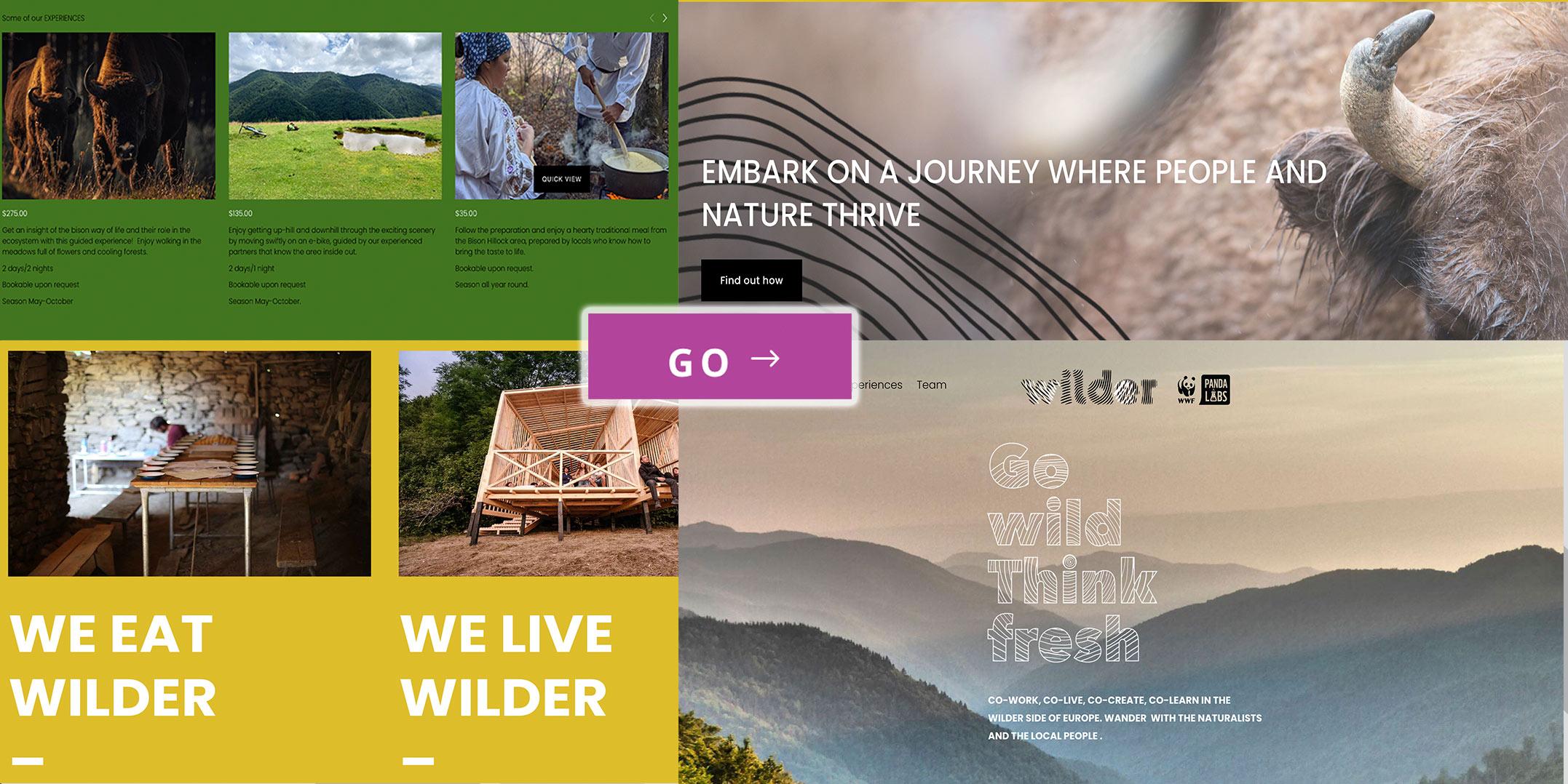 We Wilder Panda Synerb