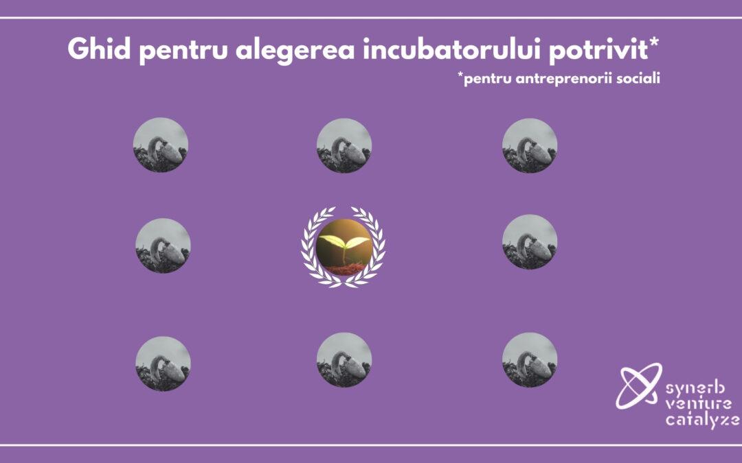 Incubatoare, acceleratoare, antreprenori sociali