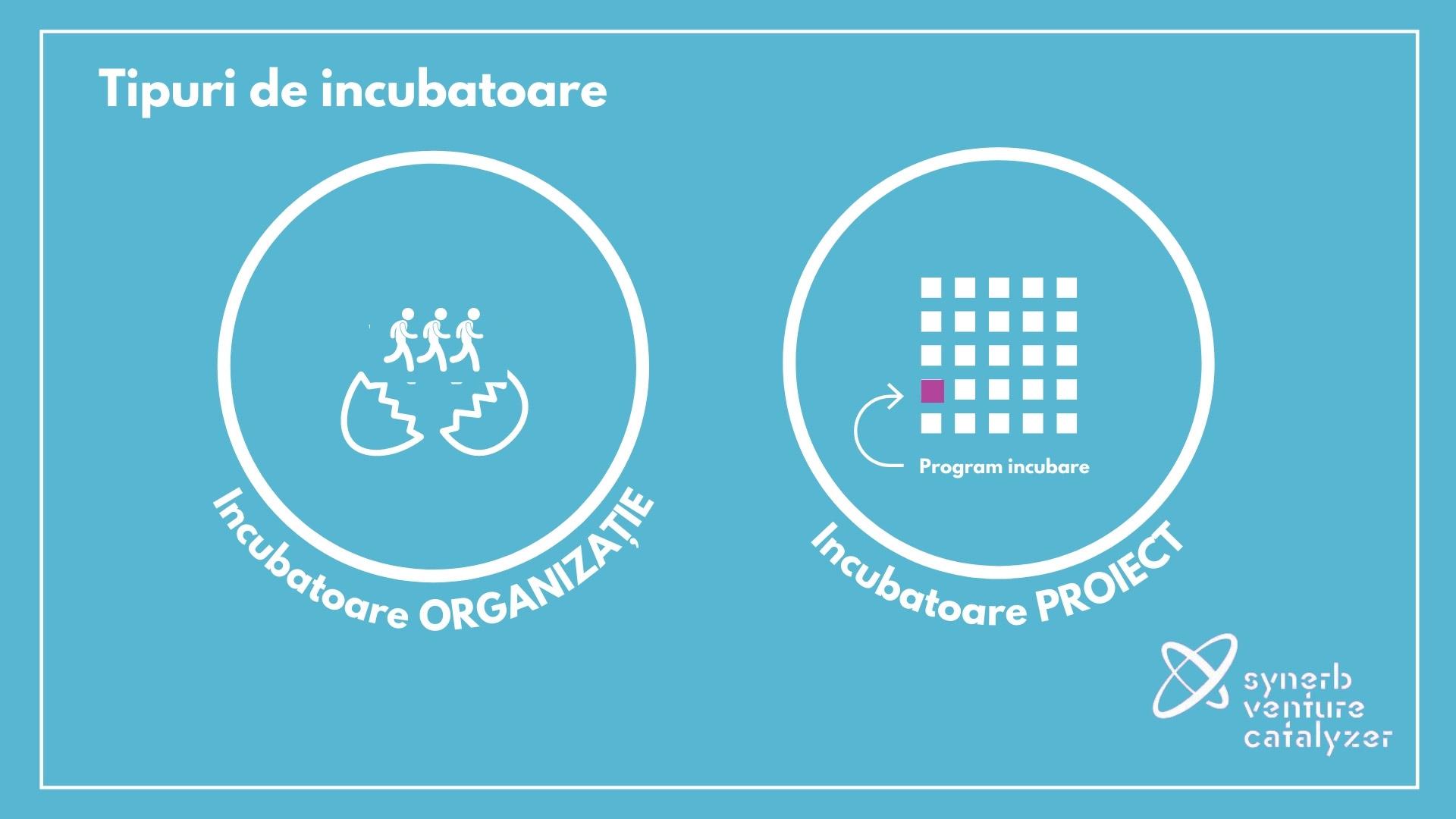 Synerb incubare de afaceri 1