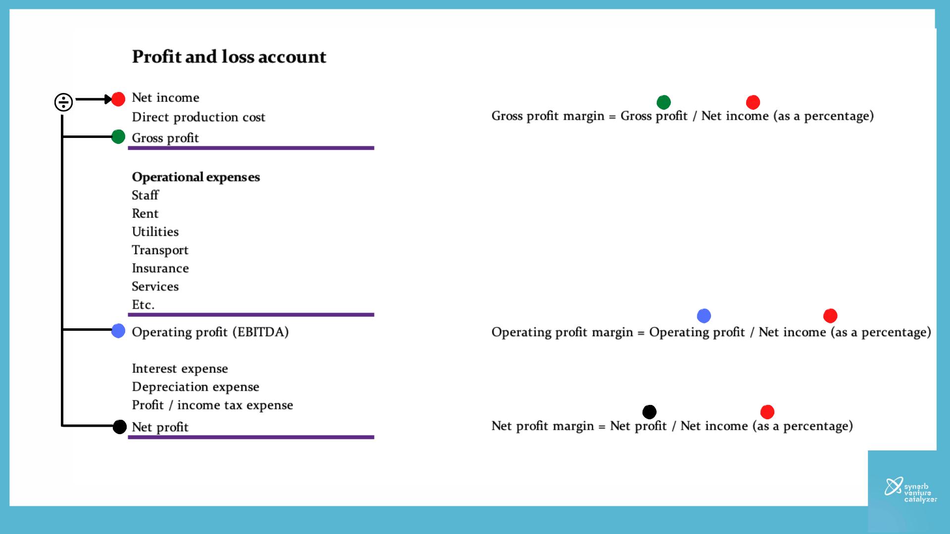 Social Enteprise Financial Model P L Synerb